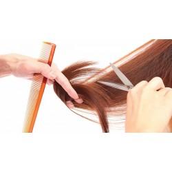 Секутся кончики волос?