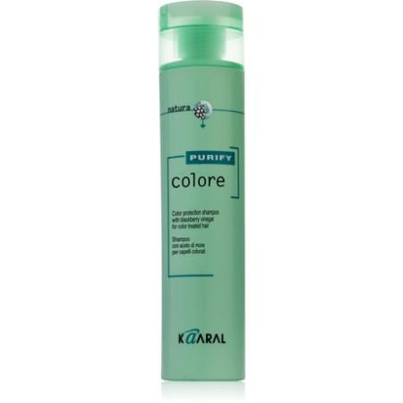 Шампунь для окрашенных волос с ежевичным уксусом Colore Shampoo
